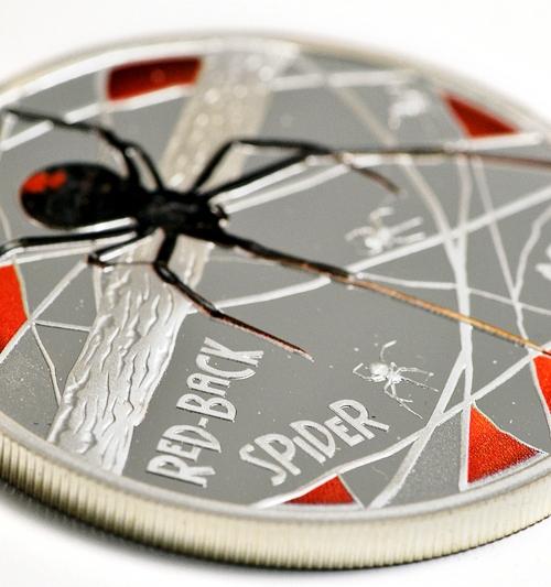 Spider%202006.jpg
