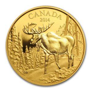"""Kanada 2014 - $350 Ikony Kanadyjskiej Przyrody Majestatyczny Łoś """"2"""" - 35 Gramów Czystego Złota"""