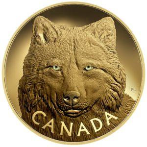 Kanada 2017 - 2500$ Ikona Kanadyjskiej Przyrody w Oczach Szarego Wilka - 1 Kilogram Czystego złota