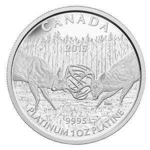 Kanada 2015 - 300$ Walczące Jelenie - 1 oz. Platynowa Moneta