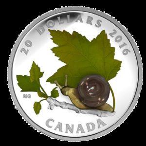 Kanada 2016 - 20$ Murano Glass - Szkło Weneckie Ślimak - Srebrna Moneta