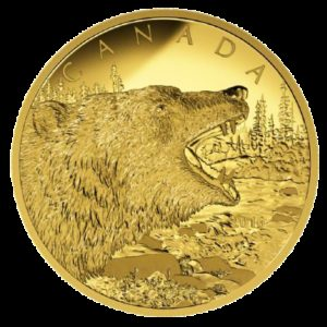 Kanada 2016 - 1250$ Ryczący Niedźwiedź Grizli - 1/2 Kilo Złota Moneta
