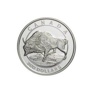 """Kanada 2009 - 300$ Bizon Stepowy """"3"""" - 1 Oz. Platynowa Moneta"""